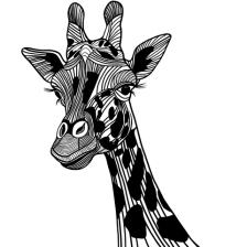 giraffe-dreamstime_xs_31307435