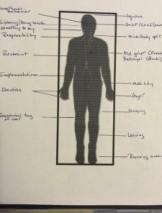 Body as Storyboard